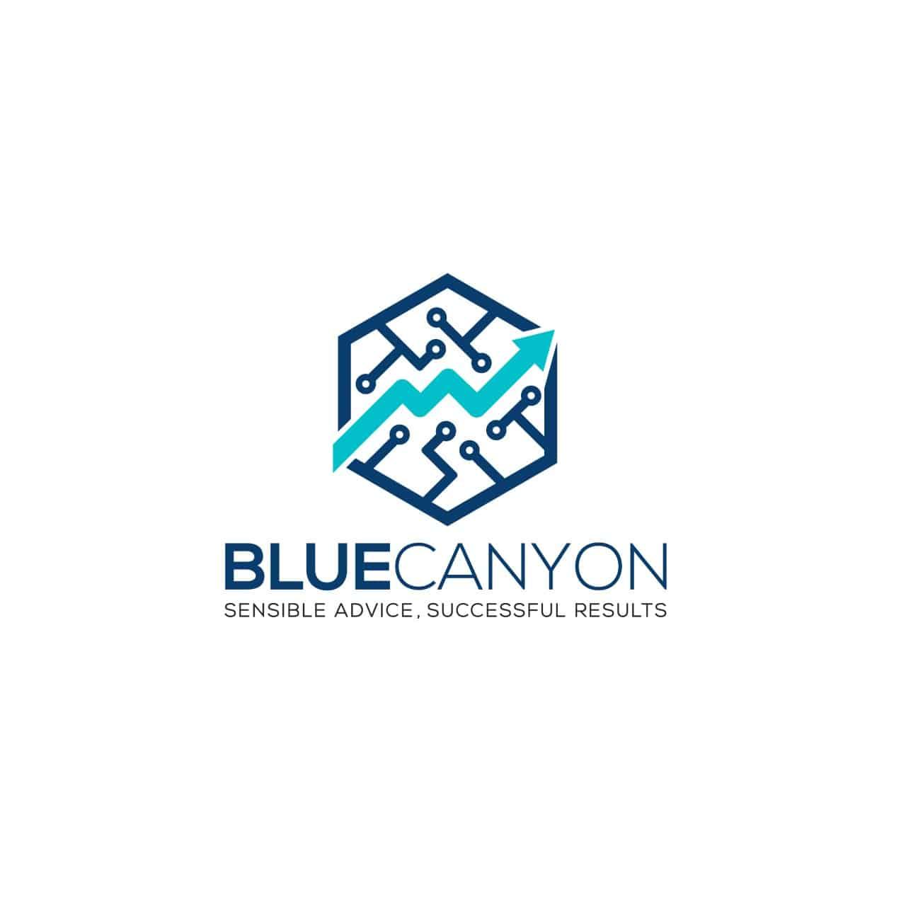 Blue Canyon CPA